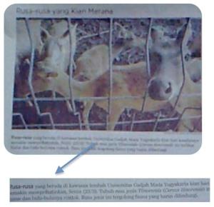 snapshot-2009-03-24-20-53-55
